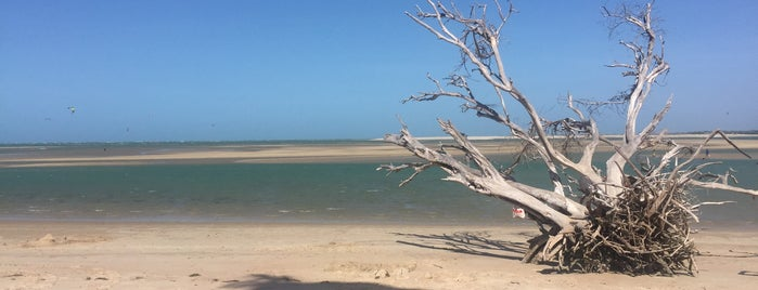 Praia do Macapá is one of Silas Donatoさんのお気に入りスポット.