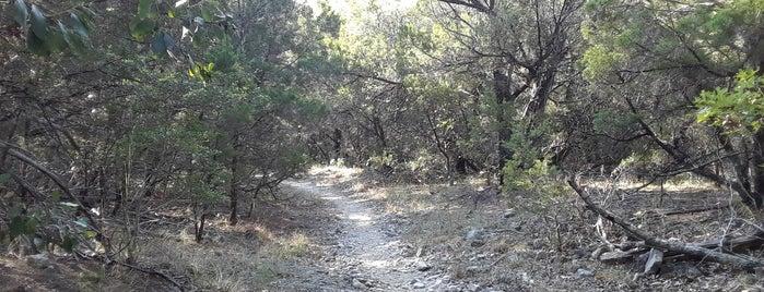 Balcones Canyonlands Preserve is one of Lugares guardados de Adam.