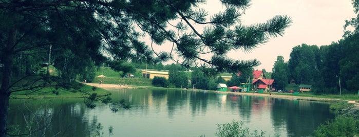 Озеро в парке Кольцово is one of Lieux qui ont plu à Danil.