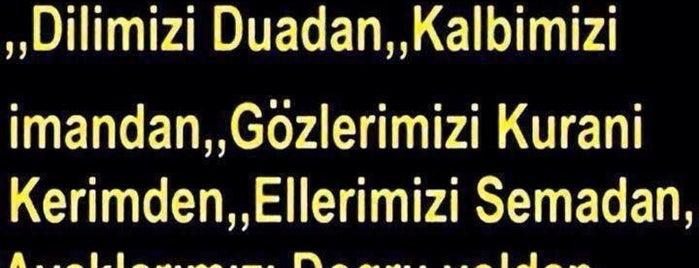 Yildiz malikhanesi is one of Mさんの保存済みスポット.
