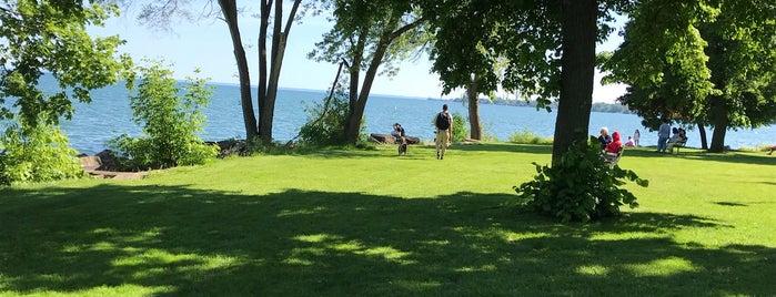 J. C. Saddington Park is one of Parks and Beaches in GTA.