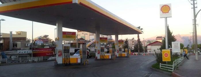 Shell- Erdemler Nakliyat is one of CHECK-IN EVERYDAY 😗.