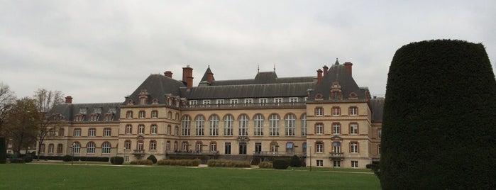 Parc de la Cité Internationale Universitaire is one of Orte, die Sveta gefallen.