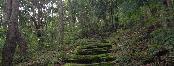 วัดพระธาตุดอยคำ (วัดสุวรรณบรรพต) Wat Phra That Doi Kham is one of Trips / Thailand.