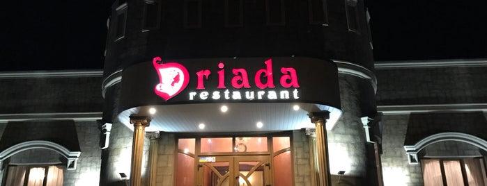 Driada is one of Бари, ресторани, кафе Рівне.