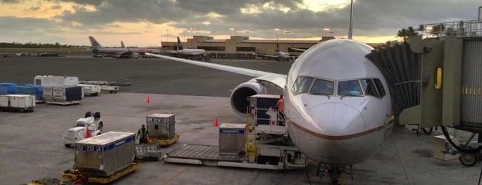 Daniel K. Inouye International Airport (HNL) is one of สนามบินนานาชาติ (1).