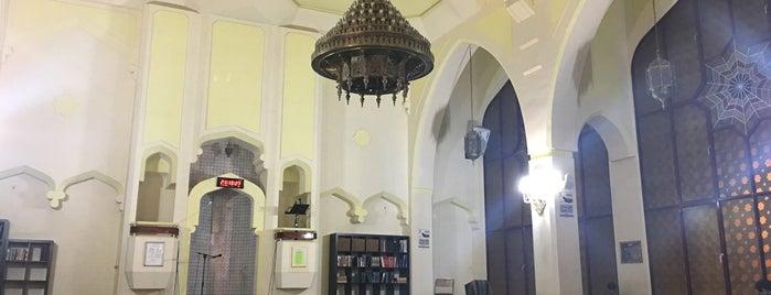 Mezquita Central de Madrid is one of สถานที่ที่ Miguel ถูกใจ.