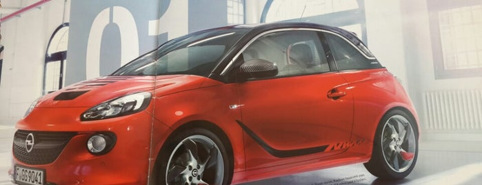 Opel&Chevrolet Ekcan Plaza is one of Posti che sono piaciuti a ustalar kanalizasyon.