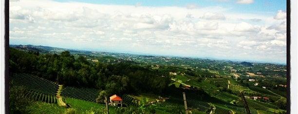 Cordara Vini Azienda Vitivinicola is one of Piemonte my love.
