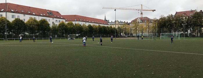 SpVgg 1906 Haidhausen is one of Football Grounds Munich.