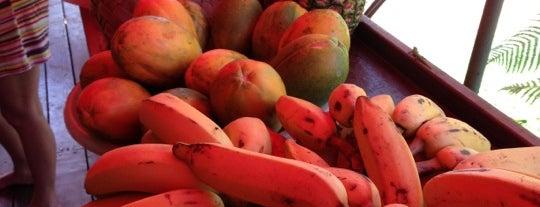 Moloa'a Sunrise Fruit Stand is one of kauai.