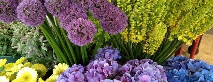 Jephry Floral Studio is one of Gespeicherte Orte von Margie.