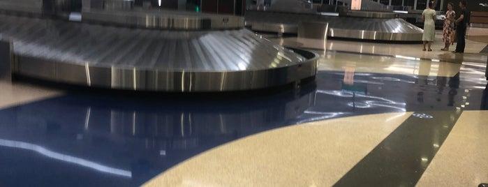 FSD Baggage Claim is one of Ryan : понравившиеся места.