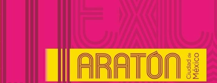 Expo Maraton Internacional Ciudad De Mexico is one of adriana'nın Kaydettiği Mekanlar.