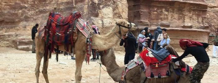 Wadi Musa is one of Locais curtidos por Emilio.