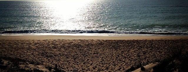 Parque Natural Da Ria Formosa is one of Portugal- Algarve.