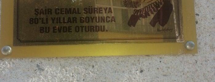Cemal Süreya Sokak is one of Moda.