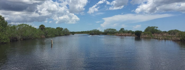 Captain Mitch's Everglades Airboat Tours is one of Alexandra : понравившиеся места.