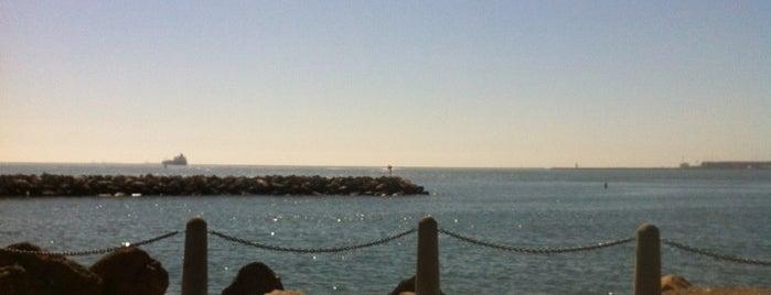 Long Beach Marina is one of California.