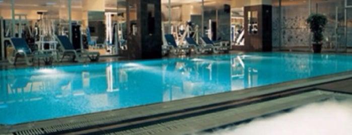 Greenpark Hotel Gym&Fitness&Sports Center is one of Sevgili Tadında +905318722997 Whatsapta.