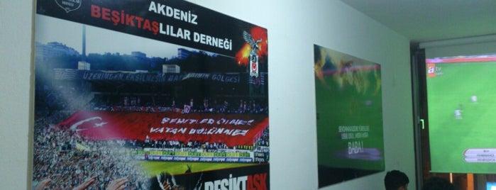 Akdeniz Beşiktaşlılar Derneği is one of fatih 님이 좋아한 장소.
