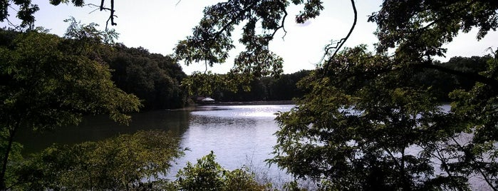 Beaver Dam State Park is one of Illinois State Parks.