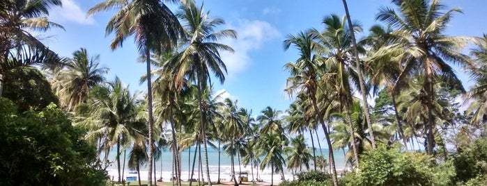 Praia do Resende is one of Posti salvati di Dayana.