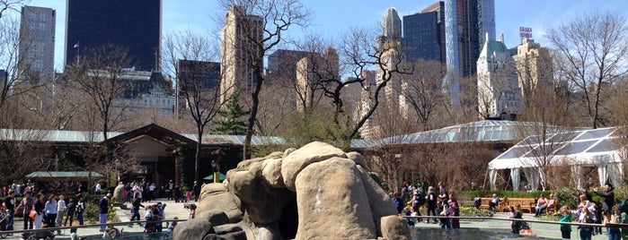 Central Park Zoo is one of Concierge Top 10 Places for Children.