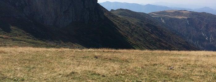 Çağrankaya Yaylaları is one of Mountain Resorts In Black Sea Region.