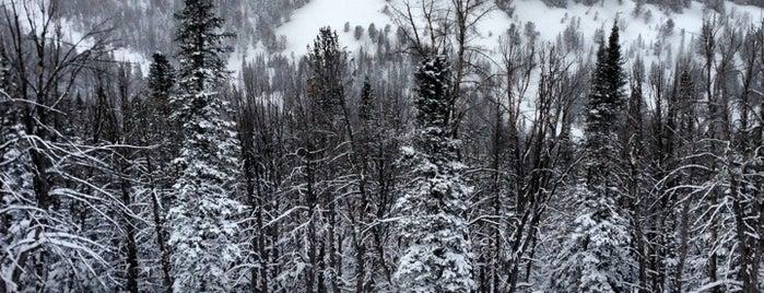 Yellowstone Club is one of ski bumming.