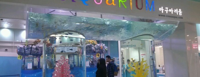 COEX Aquarium is one of Seoul.
