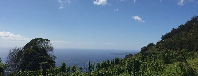 Ulupalakua Ranch is one of Maui.