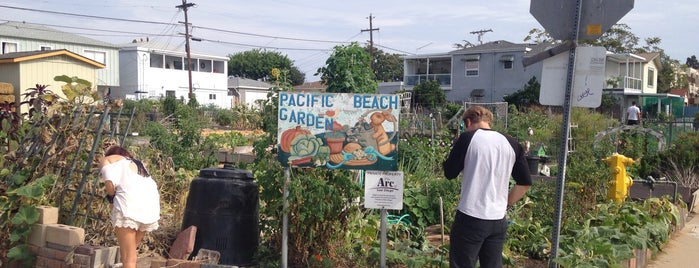 Pacific Beach Community Garden is one of Locais curtidos por Veronica.