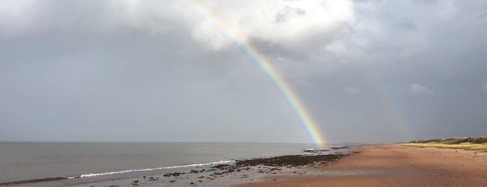 Prince Edward Island National Park of Canada is one of My Favourite Destinations in Canada.