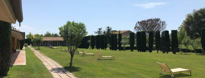 Châteauform' Le Mas Sant Joan is one of Daniel 님이 좋아한 장소.
