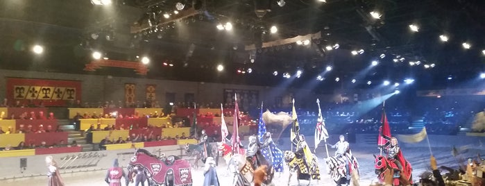 Medieval Times Dinner & Tournament is one of Tempat yang Disukai Lovely.