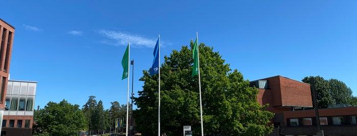 Aalto-yliopisto is one of ESPOO - FINLAND.