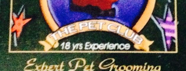 The Pet Club is one of Melhor atendimento.