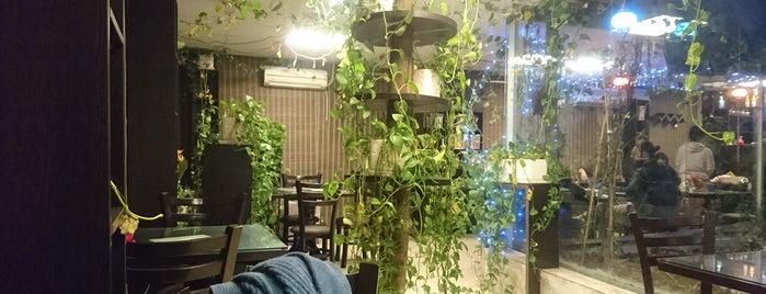 کافه کتاب سِدره | Sedre Book Cafe is one of Rozhin'in Kaydettiği Mekanlar.