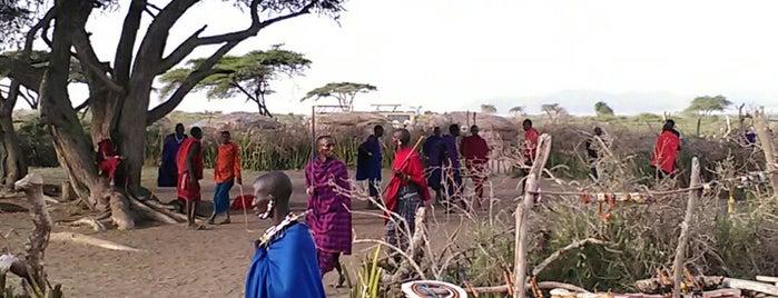 Ngorongoro Conservation Area is one of Tempat yang Disukai Catherine.