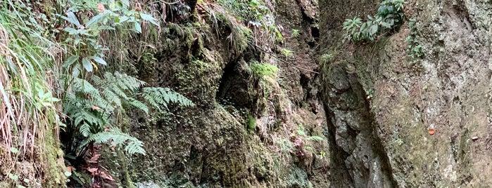 Levada Velha is one of Madeira.