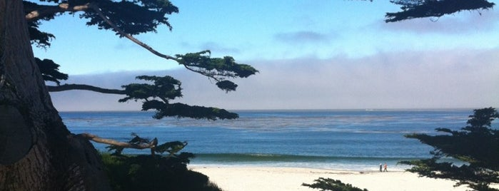 Carmel Beach City Park is one of Lieux sauvegardés par Frank.