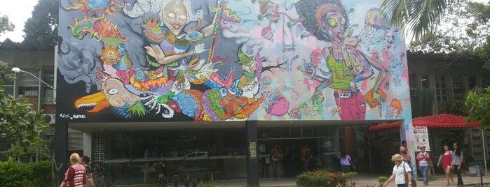 CE - Centro de Educação is one of สถานที่ที่ Felipe ถูกใจ.