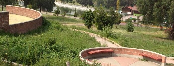 Parque Ecologico Acoatl is one of Visitados.