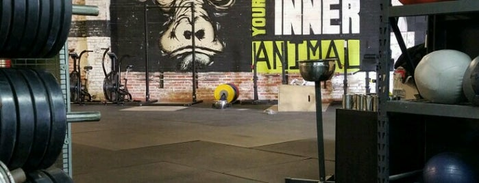 Crossfit Urban Animal is one of HTOWN SPOTS.