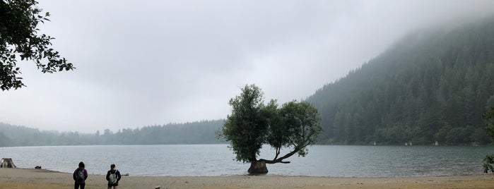 Rattlesnake Ledge Trail is one of Fun/Events.