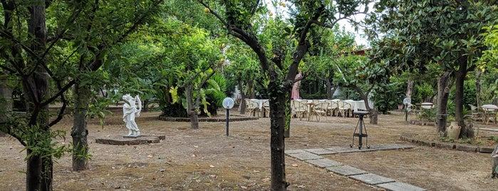 Ristorante I Giardini Di Tasso is one of Italy.