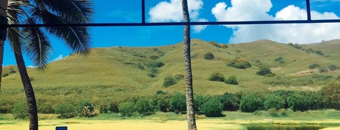 Crossfit Kailua is one of Hawaii.