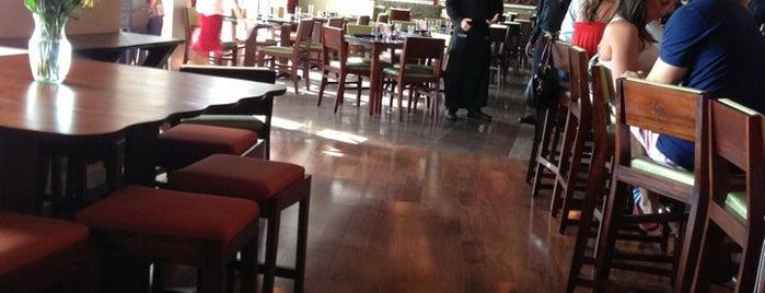 The 15 Best Italian Restaurants In Cleveland