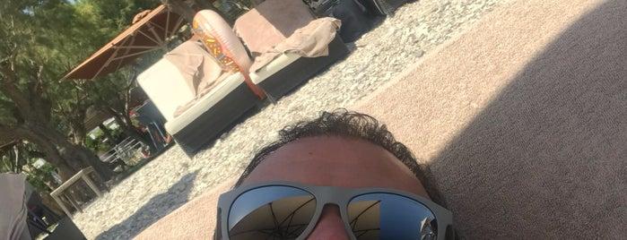 Doryssa Seaside Resort Main Bar Hippocampus is one of Posti che sono piaciuti a Aylin.